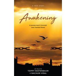 Awakening by Nachum Vidal [Hardcover]